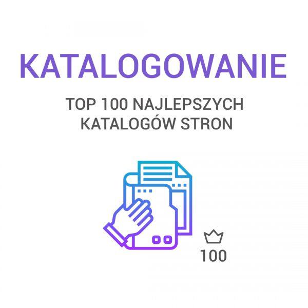 katalogowanie - TOP 100