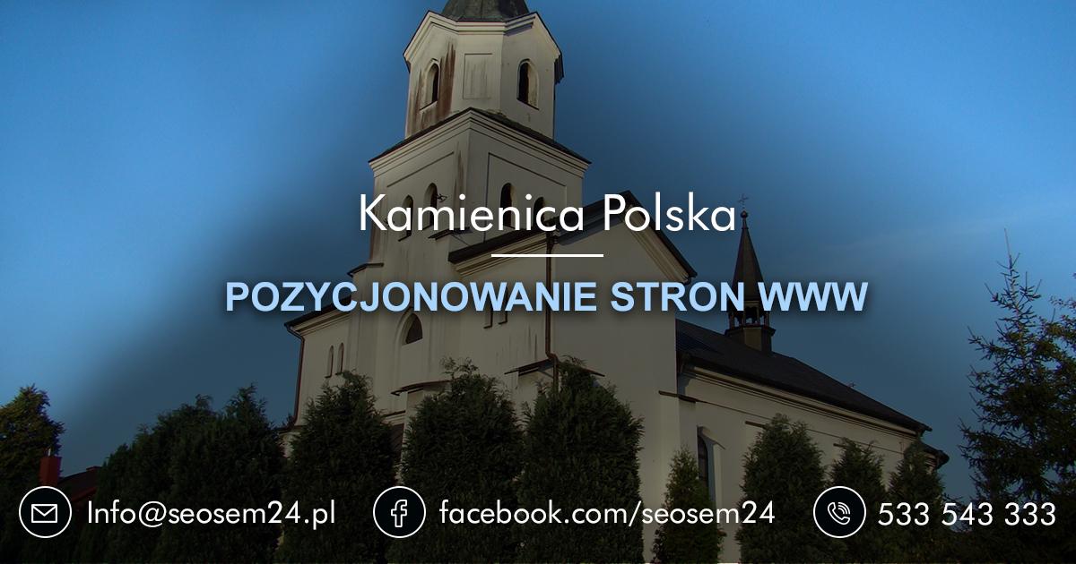 Pozycjonowanie stron www Kamienica Polska