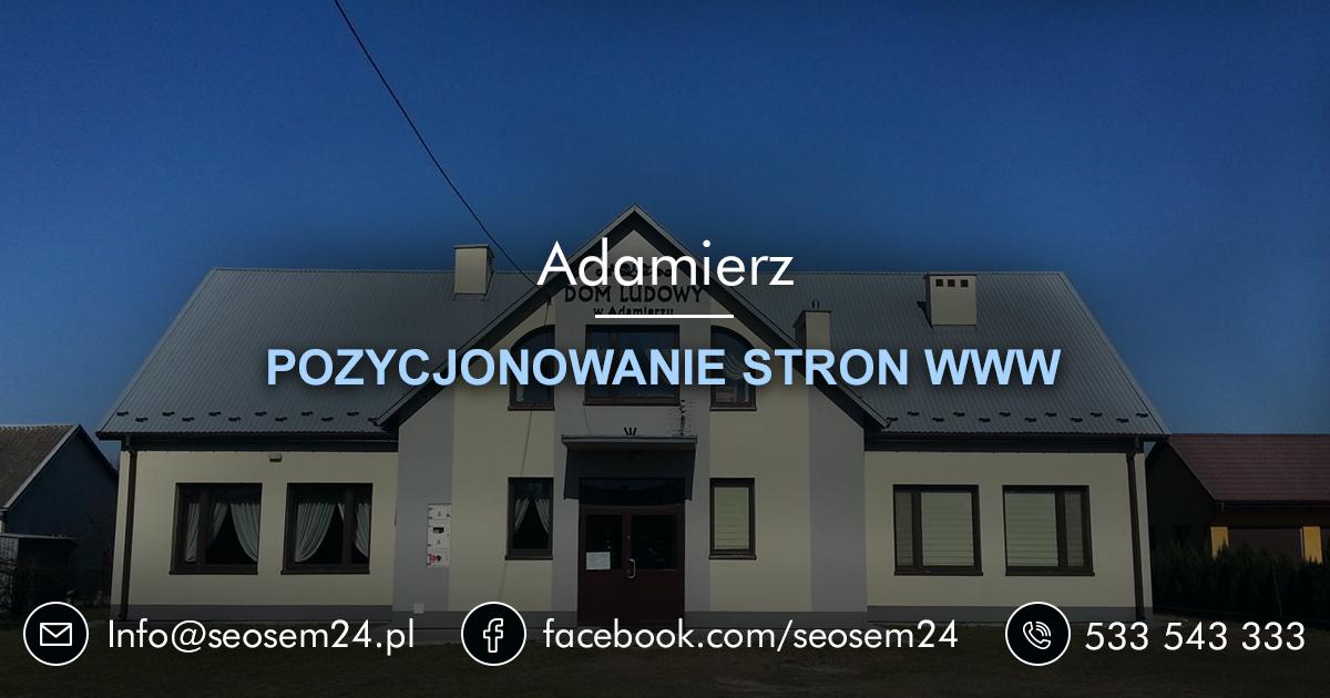 Pozycjonowanie stron www Adamierz - Pozycjonowanie Adamierz