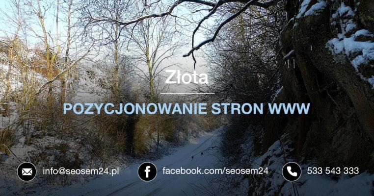 Pozycjonowanie stron www Złota
