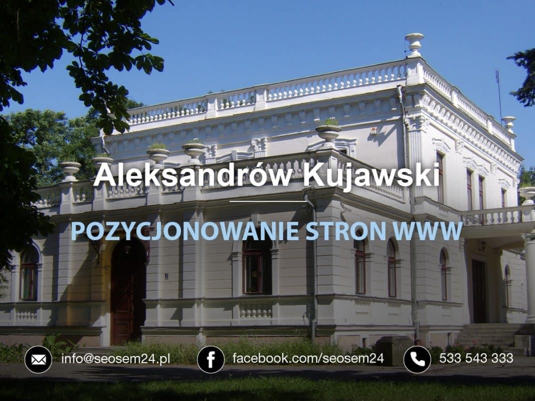 Pozycjonowanie Aleksandrów Kujawski