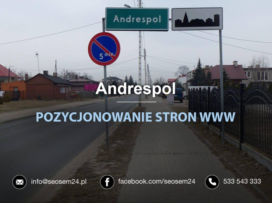 Pozycjonowanie Stron WWW Andrespol