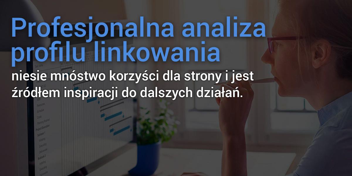 ANALIZA profilu_2