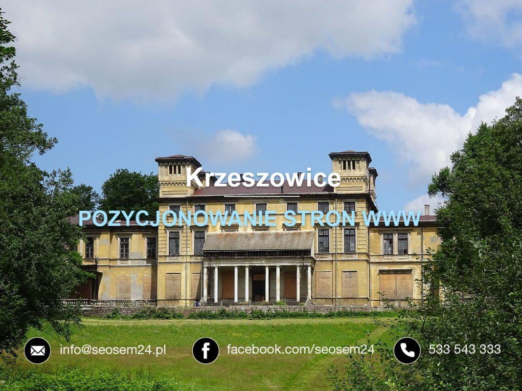 Pozycjonowanie stron www Krzeszowice